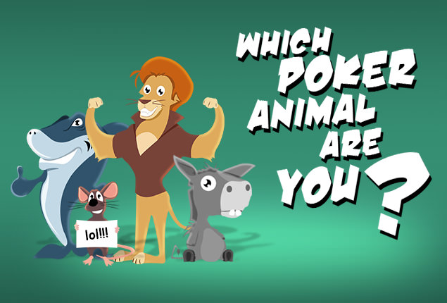 Types of poker players animals 888 poker and 888 casino